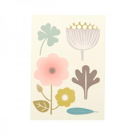 Carte Alice