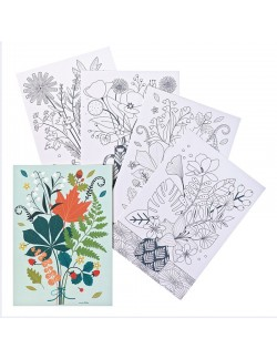 4 illustrations to color Bouquets
